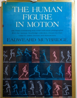 Muybridge, The human figure in motion